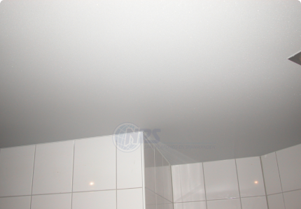 Bent U Op Zoek Naar Een Nieuw Badkamer Plafond